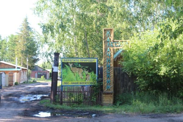 Отдел Калачинского лесничества (Лесхоз)