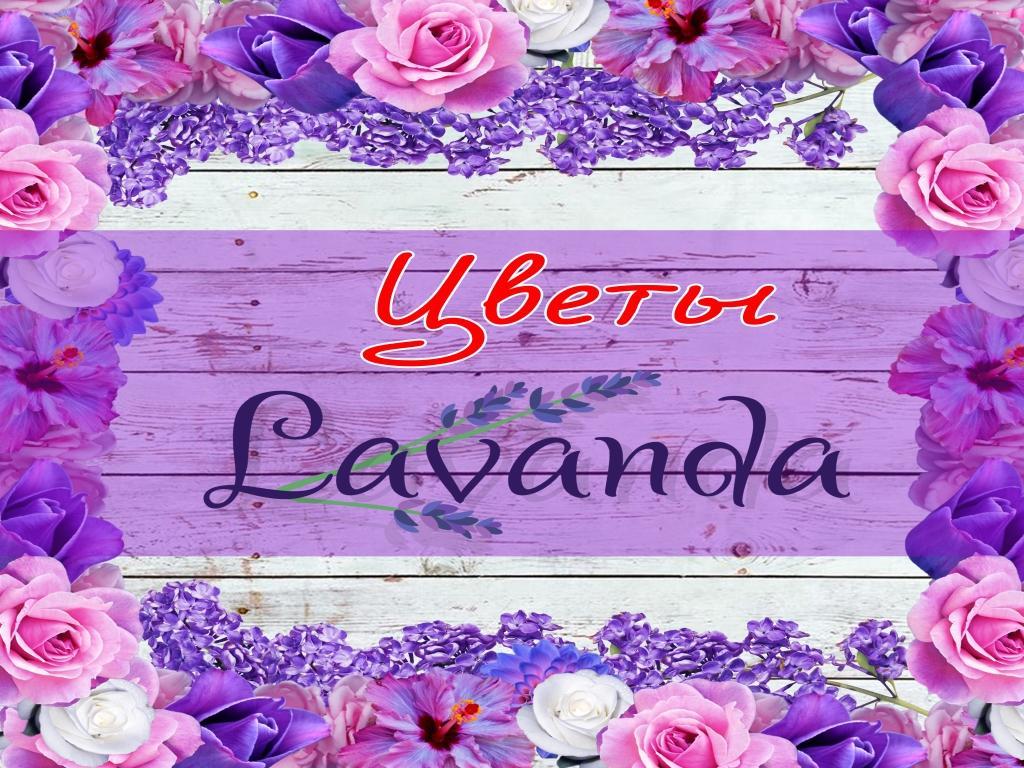 Магазин цветов «Лаванда»